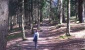 Randonnée Marche Aywaille - BE - Ninglinspo - Chefna - Fonds de Quareux - Photo 7