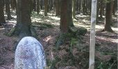 Randonnée Marche Aywaille - BE - Ninglinspo - Chefna - Fonds de Quareux - Photo 6