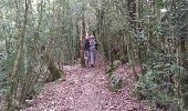 Randonnée Marche OCTON - escandorgue - Photo 14