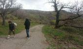 Randonnée Marche OCTON - escandorgue - Photo 7