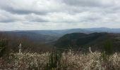Randonnée Marche OCTON - escandorgue - Photo 3
