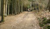 Trail Mountain bike Modave - Rando CONDROZ - VTT - Photo 52
