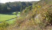 Trail Mountain bike Modave - Rando CONDROZ - VTT - Photo 67