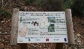Trail Walk LOUBARESSE - Tanargue jour 2 - Photo 13
