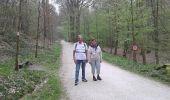 Trail Walk Tervuren - Tervuren - Photo 3
