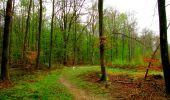 Trail Walk LONGPONT - en forêt de Retz_24_Longpont_MF du Rond de la Reine_AR - Photo 150