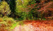 Trail Walk LONGPONT - en forêt de Retz_24_Longpont_MF du Rond de la Reine_AR - Photo 164