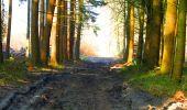 Trail Walk LONGPONT - en forêt de Retz_24_Longpont_MF du Rond de la Reine_AR - Photo 6