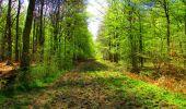 Trail Walk LONGPONT - en forêt de Retz_24_Longpont_MF du Rond de la Reine_AR - Photo 136
