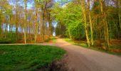 Trail Walk LONGPONT - en forêt de Retz_24_Longpont_MF du Rond de la Reine_AR - Photo 47