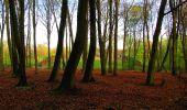 Trail Walk LONGPONT - en forêt de Retz_24_Longpont_MF du Rond de la Reine_AR - Photo 35
