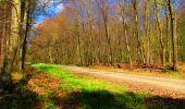 Trail Walk LONGPONT - en forêt de Retz_24_Longpont_MF du Rond de la Reine_AR - Photo 125