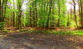 Trail Walk LONGPONT - en forêt de Retz_24_Longpont_MF du Rond de la Reine_AR - Photo 108