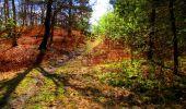 Trail Walk LONGPONT - en forêt de Retz_24_Longpont_MF du Rond de la Reine_AR - Photo 145