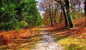 Trail Walk LONGPONT - en forêt de Retz_24_Longpont_MF du Rond de la Reine_AR - Photo 143