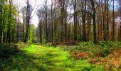 Trail Walk LONGPONT - en forêt de Retz_24_Longpont_MF du Rond de la Reine_AR - Photo 76