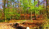 Trail Walk LONGPONT - en forêt de Retz_24_Longpont_MF du Rond de la Reine_AR - Photo 59