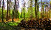 Trail Walk LONGPONT - en forêt de Retz_24_Longpont_MF du Rond de la Reine_AR - Photo 90