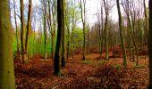 Trail Walk LONGPONT - en forêt de Retz_24_Longpont_MF du Rond de la Reine_AR - Photo 42