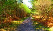 Trail Walk LONGPONT - en forêt de Retz_24_Longpont_MF du Rond de la Reine_AR - Photo 144