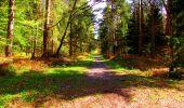 Trail Walk LONGPONT - en forêt de Retz_24_Longpont_MF du Rond de la Reine_AR - Photo 148