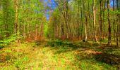 Trail Walk LONGPONT - en forêt de Retz_24_Longpont_MF du Rond de la Reine_AR - Photo 127