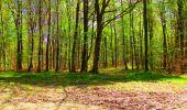Trail Walk LONGPONT - en forêt de Retz_24_Longpont_MF du Rond de la Reine_AR - Photo 123