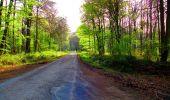 Trail Walk LONGPONT - en forêt de Retz_24_Longpont_MF du Rond de la Reine_AR - Photo 65