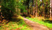 Trail Walk LONGPONT - en forêt de Retz_24_Longpont_MF du Rond de la Reine_AR - Photo 147