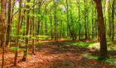 Trail Walk LONGPONT - en forêt de Retz_24_Longpont_MF du Rond de la Reine_AR - Photo 117
