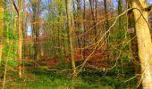Trail Walk LONGPONT - en forêt de Retz_24_Longpont_MF du Rond de la Reine_AR - Photo 57