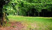 Trail Walk LONGPONT - en forêt de Retz_24_Longpont_MF du Rond de la Reine_AR - Photo 10