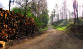 Trail Walk LONGPONT - en forêt de Retz_24_Longpont_MF du Rond de la Reine_AR - Photo 161