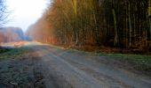 Trail Walk LONGPONT - en forêt de Retz_24_Longpont_MF du Rond de la Reine_AR - Photo 13