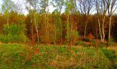 Trail Walk LONGPONT - en forêt de Retz_24_Longpont_MF du Rond de la Reine_AR - Photo 32