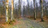 Trail Walk LONGPONT - en forêt de Retz_24_Longpont_MF du Rond de la Reine_AR - Photo 14