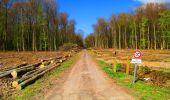 Trail Walk LONGPONT - en forêt de Retz_24_Longpont_MF du Rond de la Reine_AR - Photo 97