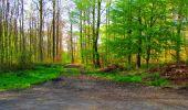 Trail Walk LONGPONT - en forêt de Retz_24_Longpont_MF du Rond de la Reine_AR - Photo 70