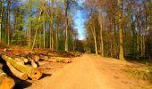 Trail Walk LONGPONT - en forêt de Retz_24_Longpont_MF du Rond de la Reine_AR - Photo 60