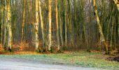 Trail Walk LONGPONT - en forêt de Retz_24_Longpont_MF du Rond de la Reine_AR - Photo 16