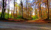 Trail Walk LONGPONT - en forêt de Retz_24_Longpont_MF du Rond de la Reine_AR - Photo 67