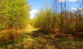 Trail Walk LONGPONT - en forêt de Retz_24_Longpont_MF du Rond de la Reine_AR - Photo 135
