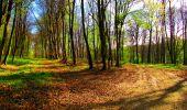 Trail Walk LONGPONT - en forêt de Retz_24_Longpont_MF du Rond de la Reine_AR - Photo 73