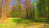 Trail Walk LONGPONT - en forêt de Retz_24_Longpont_MF du Rond de la Reine_AR - Photo 124