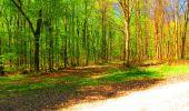 Trail Walk LONGPONT - en forêt de Retz_24_Longpont_MF du Rond de la Reine_AR - Photo 120