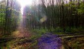Trail Walk LONGPONT - en forêt de Retz_24_Longpont_MF du Rond de la Reine_AR - Photo 37