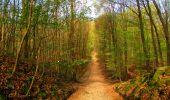 Trail Walk LONGPONT - en forêt de Retz_24_Longpont_MF du Rond de la Reine_AR - Photo 41
