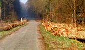 Trail Walk LONGPONT - en forêt de Retz_24_Longpont_MF du Rond de la Reine_AR - Photo 19