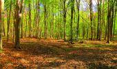 Trail Walk LONGPONT - en forêt de Retz_24_Longpont_MF du Rond de la Reine_AR - Photo 116
