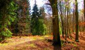 Trail Walk LONGPONT - en forêt de Retz_24_Longpont_MF du Rond de la Reine_AR - Photo 146